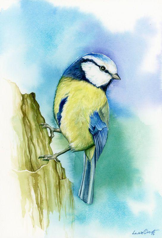 Little Birdie by LucieOn