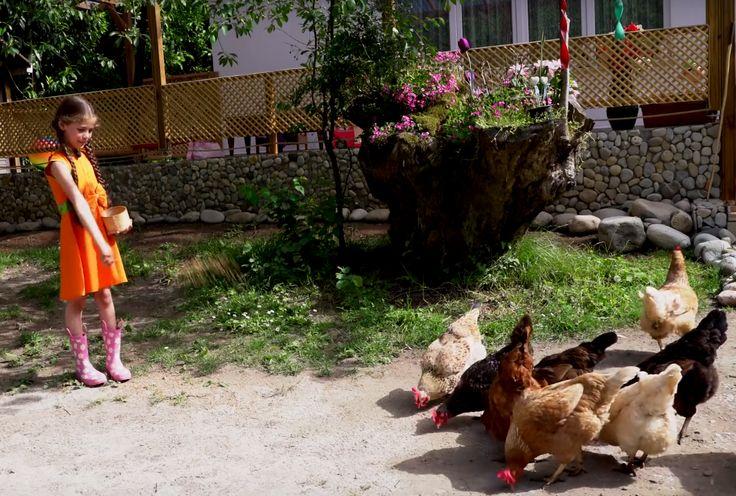 Bugün Hayvanları Koruma Günü! #isabelladamlagüvenilir hayvanları çok seviyor, ya sen? Sevimli hayvanlarla oynadığımız oyunları izledin mi? #animals #hayvanlar #horoz #tavuk #çocuk #elif #elifdizisi https://www.youtube.com/watch?v=E6qHxm_80oU&list=PLrPcaoDfsx4VP-QXCTcNiT4ropZcDpdq0&index=1