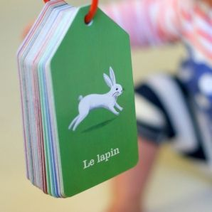 Teaching French?  think you could easliy make these out of laminated cardstock for any language!
