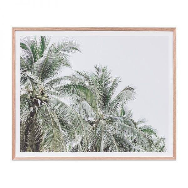 Faded Palms Print Natural Frame | OZ Design Furniture & Homewares