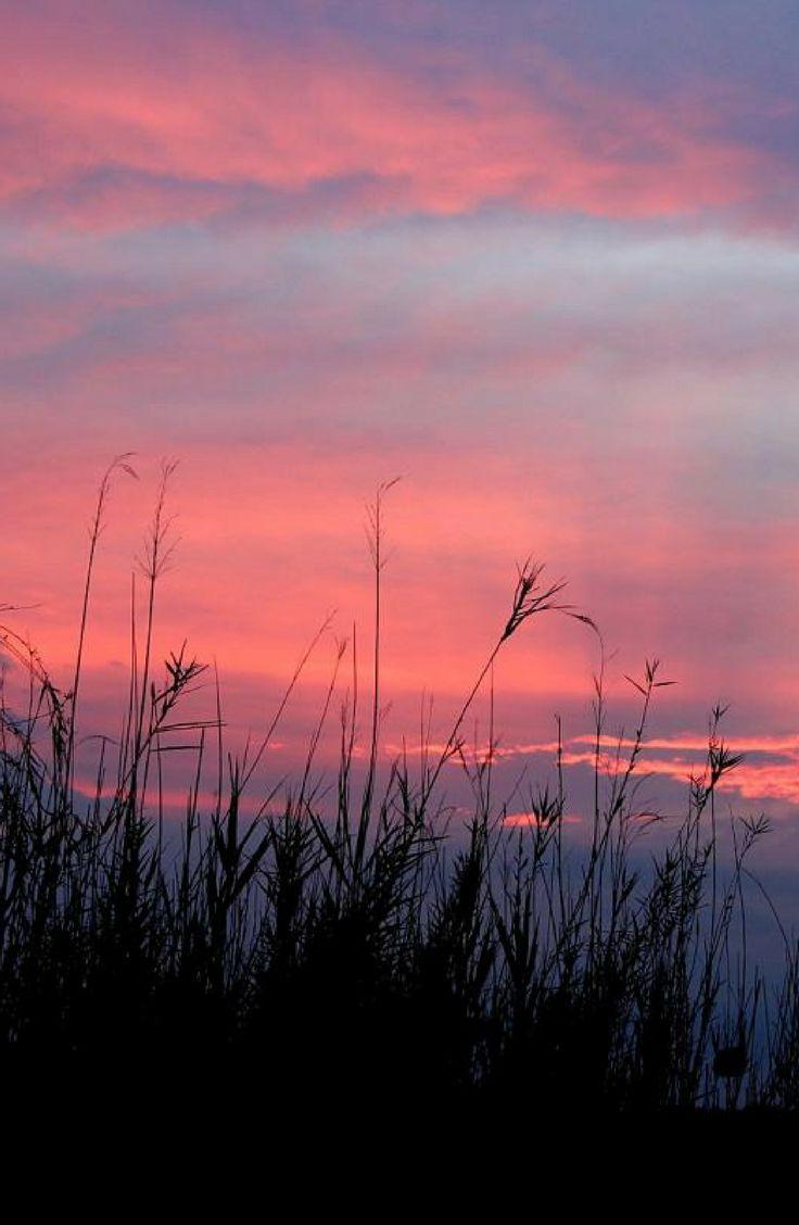 A picturesque sunset at De Kleine Serengeti