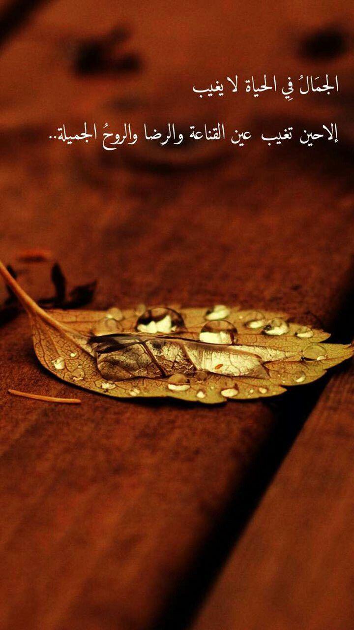 السعدآء لا ي م ل گ ون گ ل شي ئ بل م قت نعي ن بـ گ ل شي ئ H G Sweet Words Arabic Quotes Engagement Rings