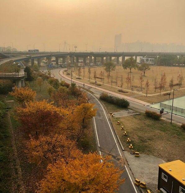 South Korea Country Roads Railroad Tracks South Korea