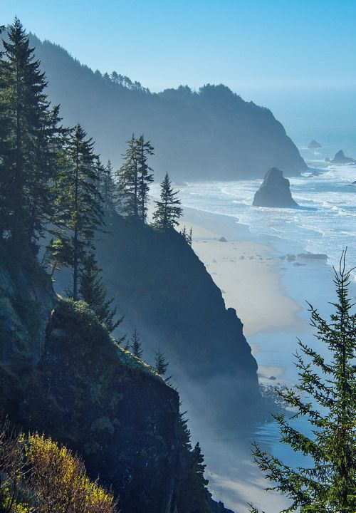 Sea Cliffs, Boardman State Scenic Corridor, Oregon Coast, USA. Located along Hwy 101 near Brookings, this 12 mile long corridor features two dozen parking areas and scenic overlooks all with stellar views of jagged rock cliffs, wave-cut arches, hundreds of forested sea stacks, grassy headlands, secluded deep-water coves and numerous sandy beaches.