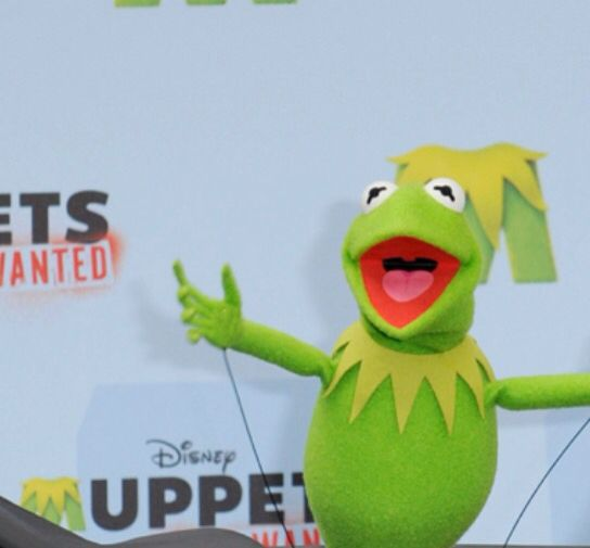 1000+ Images About TV & Film - Muppets On Pinterest