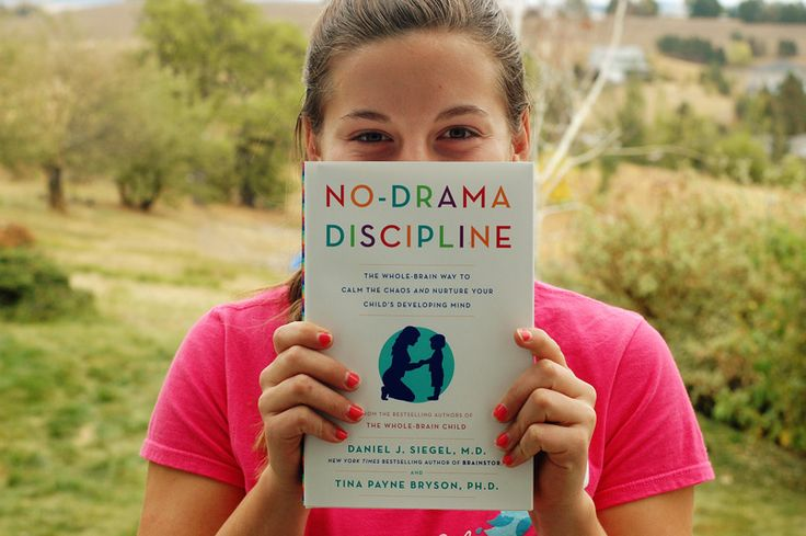 No-Drama Discipline broken down by chapter