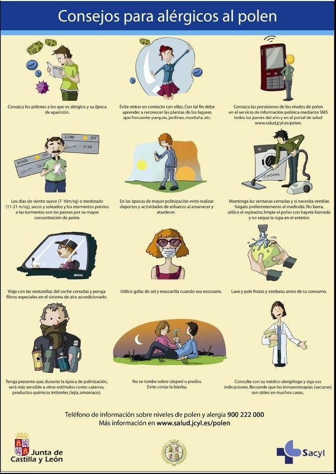 Mejores 34 Im 225 Genes De Alergias En Pinterest Alergias