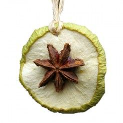 Natural Christmas Tree Decorations - Apple Star Slices - The Pink Monkey Company Ltd