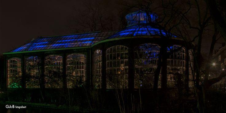 https://flic.kr/p/R2Un4L | Hortus Botanicus