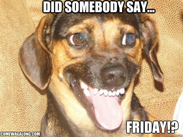Thank God It's Friday - Dog Edition   Posts, Minis and The ...