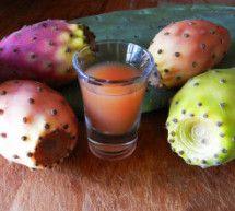 Liquore di fichi d'india