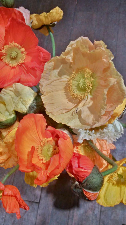Demarco Perpich Flowers Blog