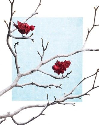 """See the """"Pinecone Cardinal"""" in our Pinecone Crafts gallery"""