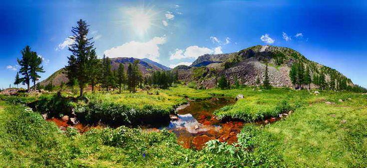 Сегодня сотрудники национального парка «Шушенский бор», расположенного в Красноярском крае, начали принимать поздравления. Особо охраняемая природная территория празднует двадцатилетие со дня своего...