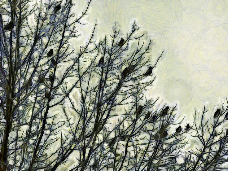 A Museum Of Waxwing Photograph by Leslie Montgomery