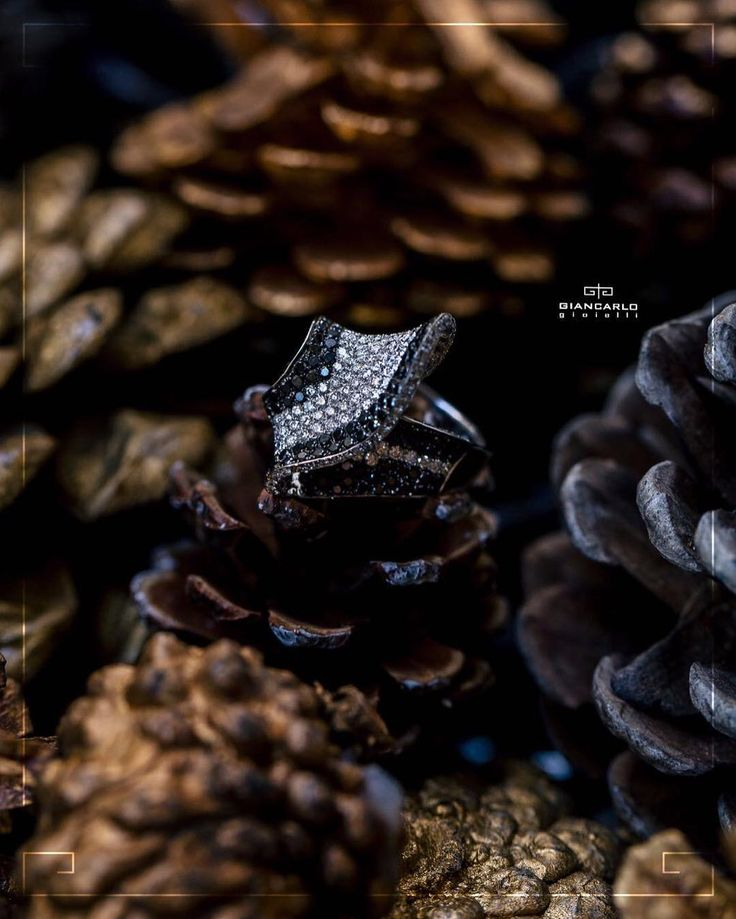 Lavish and intricate this ring will add the right amount of modern sparkle to any occasion! Handcrafted in warm 18K white gold this ring boasts a classic composition of white and black diamonds! Don't miss your chance for this fancy ring to be yours!  18 white gold (750 stamped) weight  921 gr. White Diamonds 138 ct./189 pcs.  #jewellery #giancarlogioielli #ring #bracelet #pendant #necklace #earrings #beauty #vscogood #vscobaku #vscocam #vscobaku #vscoazerbaijan #instadaily #bakupeople…