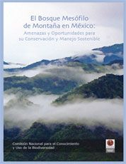 Ecosistemas de México - Bosque nublado