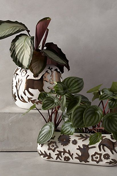 Concha Garden Planter - anthropologie.com