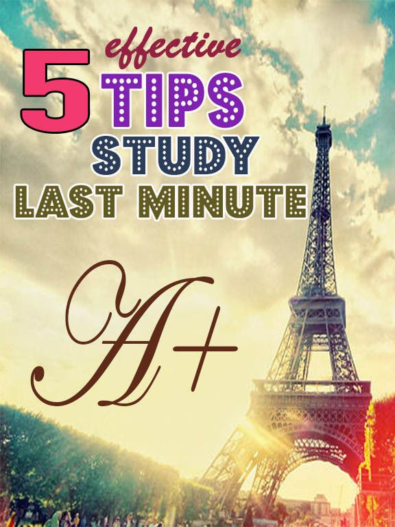 last minute study tips for students last minute student and study tips for students. Black Bedroom Furniture Sets. Home Design Ideas