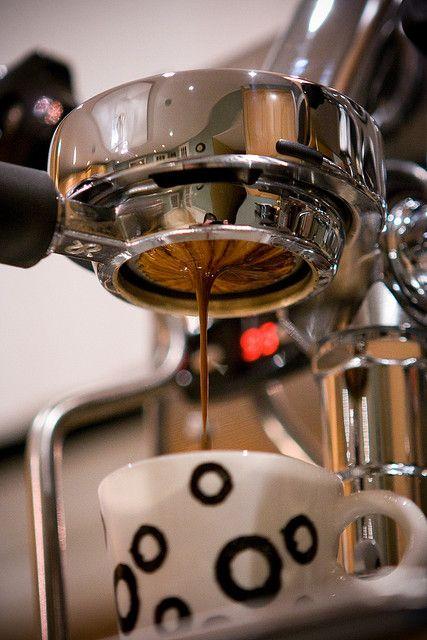 Expobar brewtus III espresso machine w/ naked portafilter