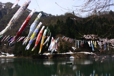 Koinobori.  It's for Kodomo no hi on   May 5th (Children's Day)
