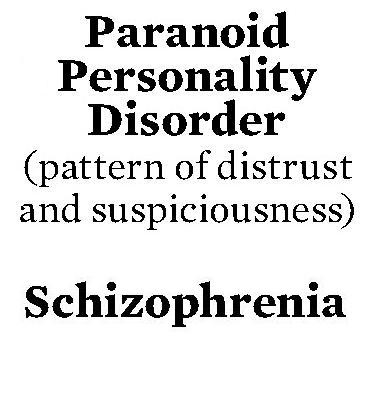 An individual with paranoid schizophrenia may spend an extraordinary amount of time thinking about ways to protect themselves from their persecutors.