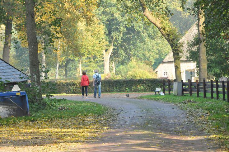 Gasten aan het wandelen in het Westersebos #Schoonebeek. Vakantie in de herst bij Erve Ensink.