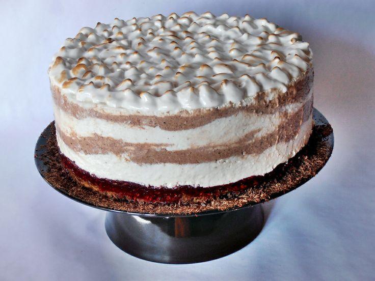 CAIETUL CU RETETE: Tort de inghetata cu ciocolata, zmeura si bezea