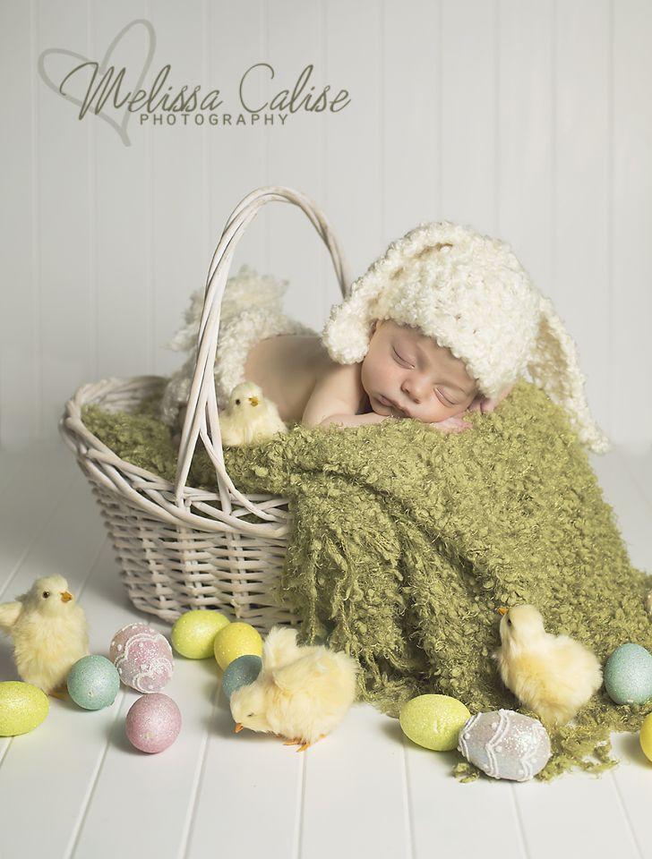 Melissa Calise Photography (Newborn Baby Boy Easter Session Photo Shoot Posing Ideas Chicks Eggs Basket)