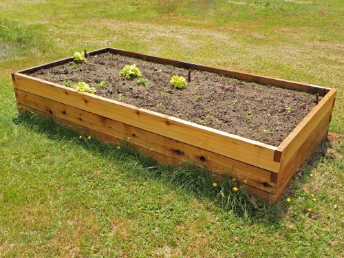 Raised Garden Bed Red Cedar Projects Pinterest Raised Gardens Garden Beds And Raised