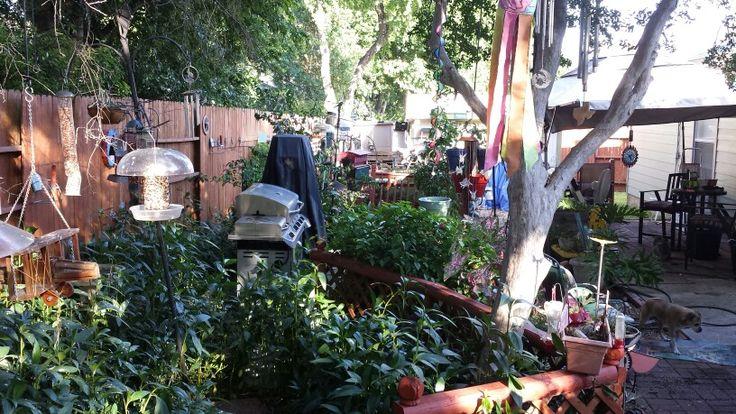 Yard needs makeover #PinMyDreamBackyard