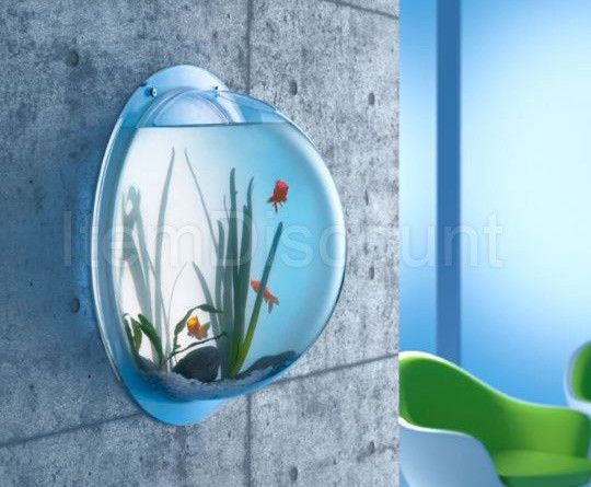 54 best images about fish n turtle on pinterest for 10 gallon fish bowl