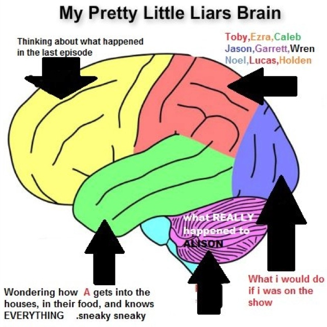 Pretty Little Liars.... Funny, yet so true! The part of my brain about all the guys on the show is a little bigger wren has his own section❤