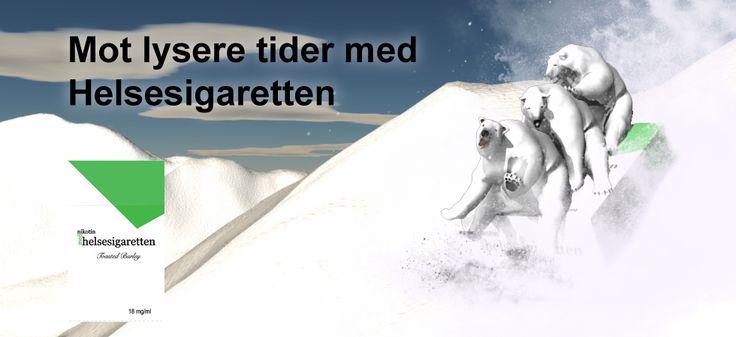 Helsesigaretten Isbjørner leker i snøen og håper på lysere tider