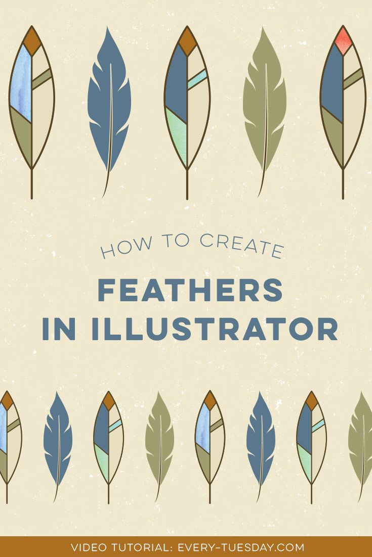 how to draw a feather in adobe illustrator