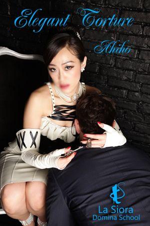 The Elegant Torture / AKIHO