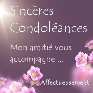 Exemples de formules de condoléance gratuites | Sincères condoléances, Message de condoléances ...