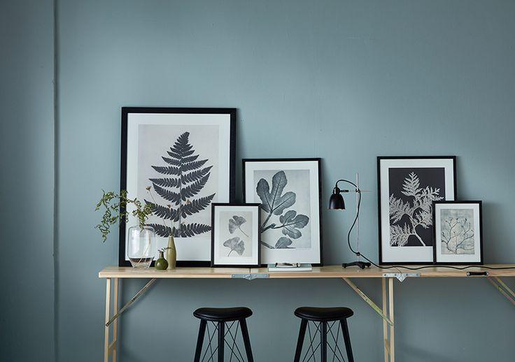 #DieNatur als Inspiration #PernilleFolcarellis Grafiken entstehen aus ihrer Faszination für Pflanzen und Bäume. Schon immer war die Natur eine ihrer größten Inspirationsquellen. Diese Liebe spricht aus ihren Bildern: wunderschöne Momentaufnahmen von Pflanzen, detailgetreu und fast wie ein Foto in warmen Farben wiedergegeben. Ihre Drucke auf säurefreiem, festem Papier entstehen von Hand an Ihrer eigenen Druckerpresse in Nordsjælland, von direkt in der Umgebung eingesammelten Pflanzen…