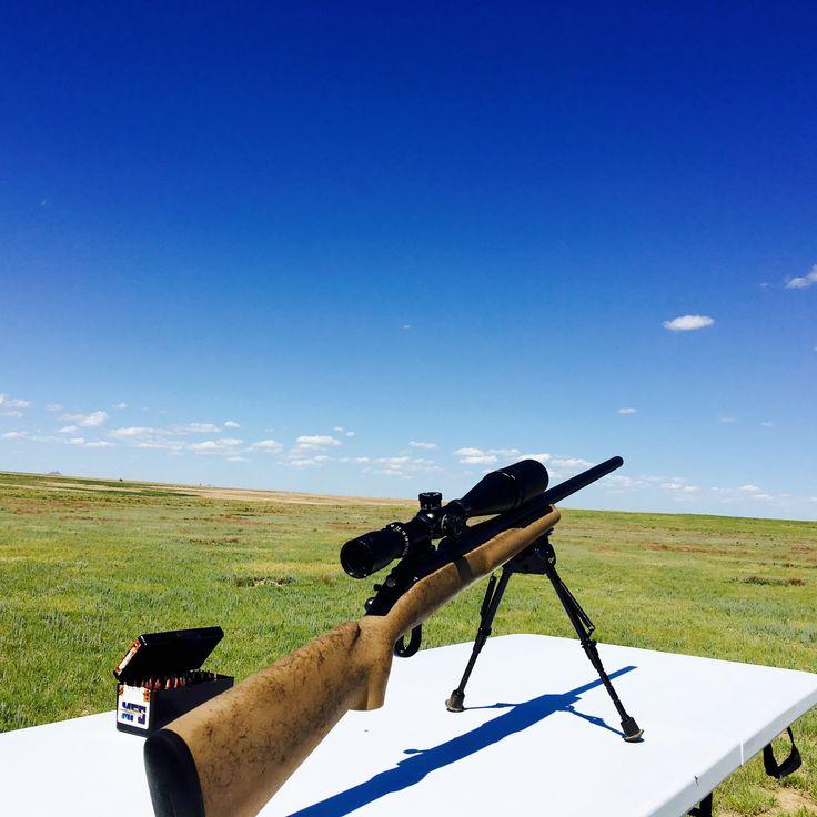 Remington 700 VSF prairie dog hunt.