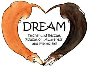 An all-donation supported, all-volunteer rescue for dachshunds and dachshund mixes. They focus on dogs and homes in our geographical area - Atlanta, North Georgia, and Savannah.