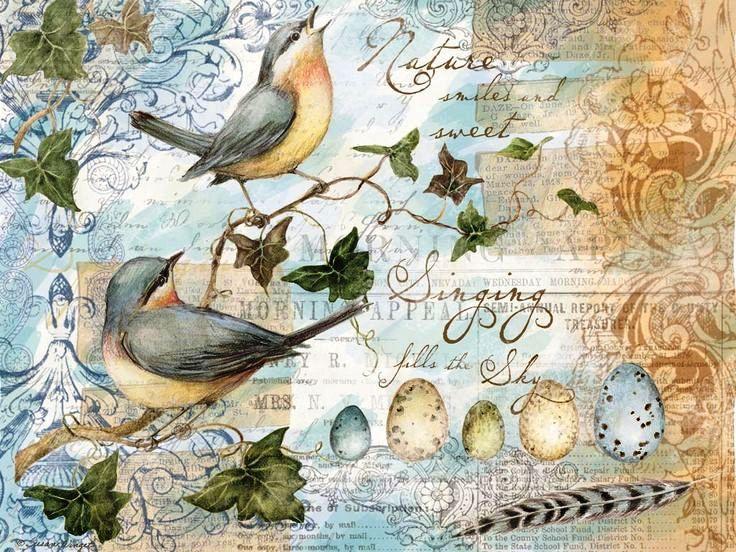 Картинки птички в стиле прованс