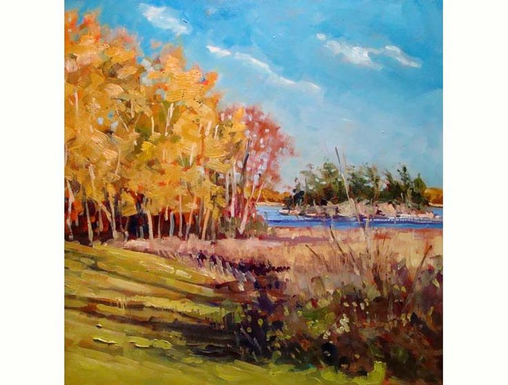 """Autumn Softwoods and Shadows 