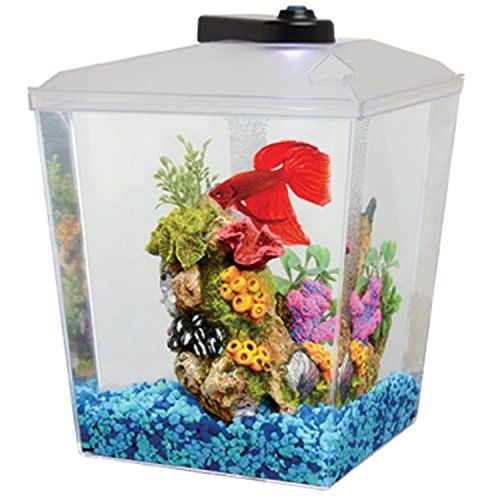 62 best images about fish tanks on pinterest glass fish for Deep blue fish tanks