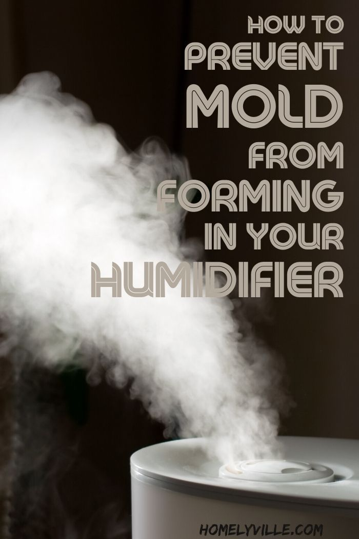 Mold Forming In A Humidifier What To Put In A Humidifier To Prevent Mold In 2020 Humidifier Molding Warm Mist Humidifier