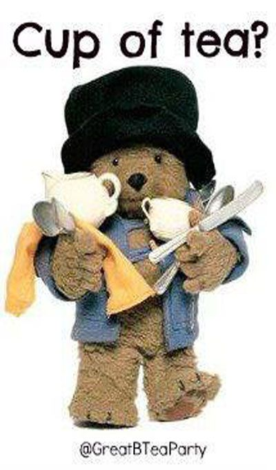 Ah - delightful Paddington Bear preparing for a Paddington Tea!