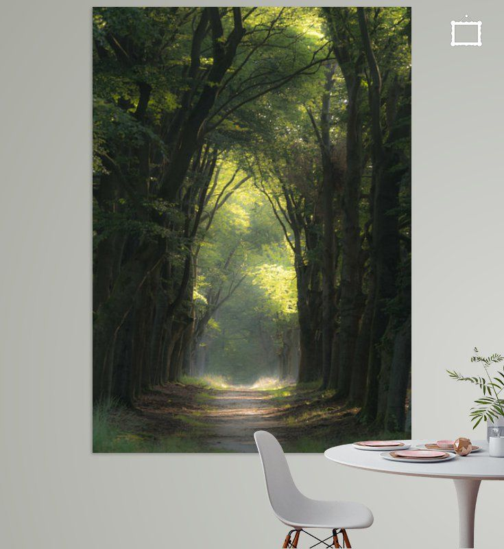 Boslaan In Het Licht Gezet Van Michel Knikker Op Canvas Behang En Meer In 2020 Behang Canvas Licht