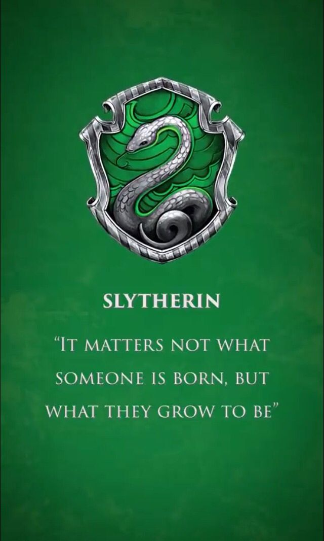 Harry Potter Slytherin Slytherin Harry Potter Harry