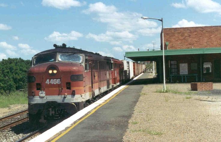 NSW Rail Rambler: November 2011 at Dungog