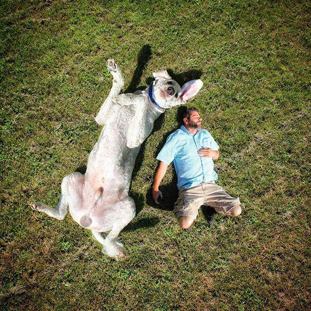 Christopher Cline et son chien géant  2Tout2Rien