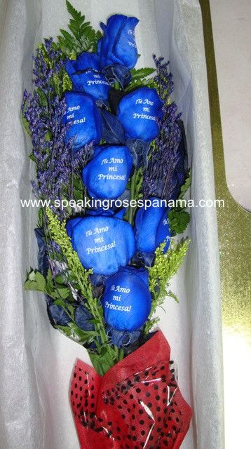 Blue roses with printed messages Rosas azules impresas con mensajes Speaking Roses Panama.